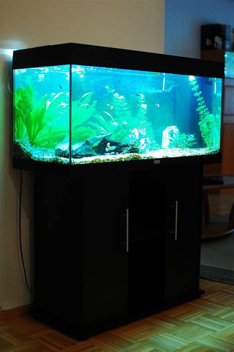 aquarium juwel 180 juwel freshwater aquarium talk