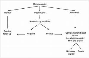 A Multiparametric Serum Marker Panel As A Complementary Test To Mammography For The Diagnosis Of