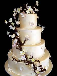 wedding cake photos weddings cakes