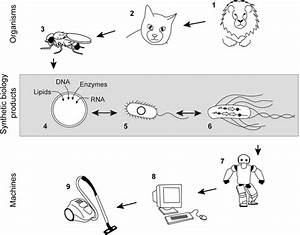Synthetic Organisms And Living Machines