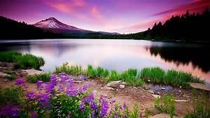 Beautiful Landscape Wallpaper Download Free