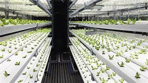 Take A 3d Tour Of A Vertical Farm Packed Inside A Shipp