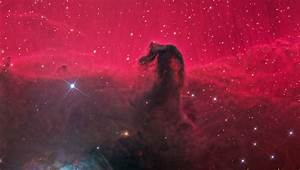 Horsehead Nebula actually a terrible threat by the space mafia