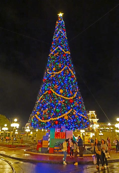 disney world christmas trees the complete guide to disney world events 2957