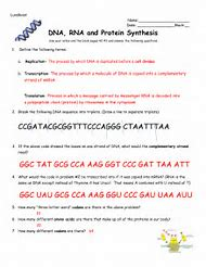 Rna protein synthesisse additionally Answer Key Worksheet On Dna Rna And Protein Synthesis   Charlespeng furthermore Dna Rna and Protein Synthesis Worksheet Answer Key Fresh Structure as well Dna rna protein synthesis homework  1     shoekashoes likewise New Protein Synthesis Answer Key Dna Rna Protein Synthesis Worksheet further Best Protein Synthesis   ideas and images on Bing   Find what you'll also Dna Rna and Protein Synthesis Worksheet Awesome Worksheet 1 further Protein Synthesis Review Worksheet   Lobo Black also Worksheet  DNA  RNA  and Protein Synthesis moreover Fresh Dna Codon Chart dna rna and protein synthesis worksheet in addition  also  moreover Fresh Dna Codon Chart dna rna and protein synthesis worksheet moreover dna and protein synthesis worksheet   Siteraven likewise  in addition . on rna and protein synthesis worksheet