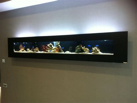 75 best images about fish tank ideas on pinterest wall