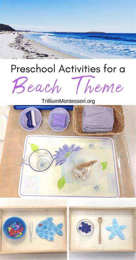 activities for a theme trillium montessori 990 | Preschool Activities for a Beach theme