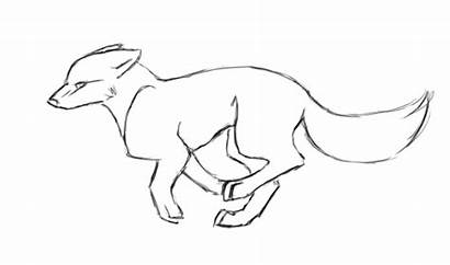 Wolf Animation Pencil Animated Eagle Drawings Drawing