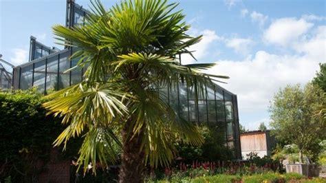 Botanischer Garten Kiel Cau by Botanischer Garten Der Christian Albrechts Universit 228 T Zu