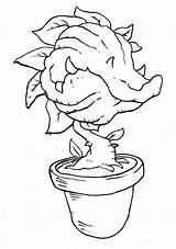 Venus Coloring Trap Fly Pages Flytrap Printable Learning Children Activities Plants Pot sketch template