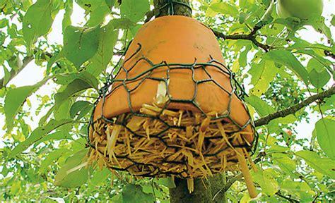 insektenhotel selber machen insektenhotel selbst de