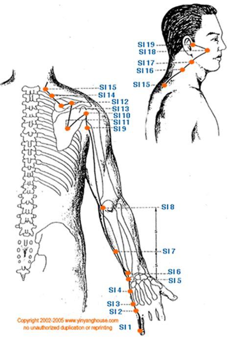 07- Meridiano del intestino delgado