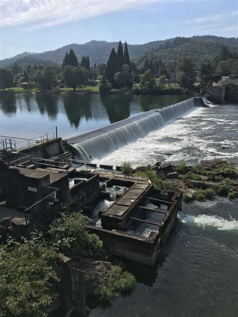 timely accurate fish counts  oregons north umpqua