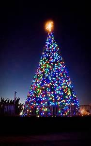 Patriotic Christmas Lights Holiday Lights At The Beach Vbgov Com City Of