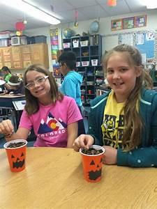 4th Grade-germination