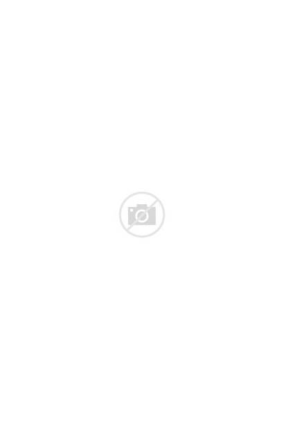 Hooded Sweatshirt Blend Heavy