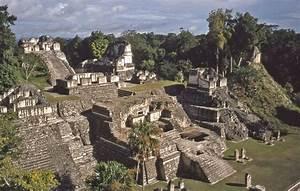 Civilizations Of Ancient Mesoamerica Zoomu002639s Edible Plants