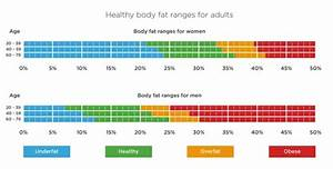 How Much Vfa  Visceral Fat  Is Normal For A Healthy Body