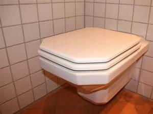 Toilette Verstopft Tipps : ern hrung pflanzliches gegen verstopfung ~ Markanthonyermac.com Haus und Dekorationen