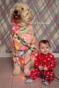 baby and dog christmas card ideas