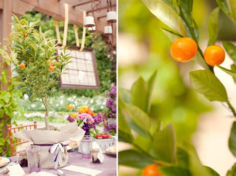 a lovely brunch wedding reception day after rehearsal or bridal shower the magazine