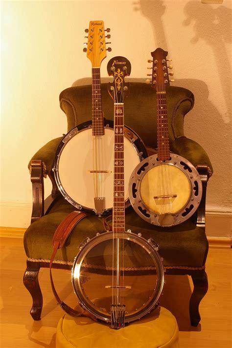 mandolin banjo wikipedia
