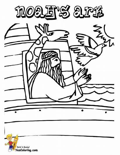 Bible Coloring Noah Sheets Printable Dove Pages