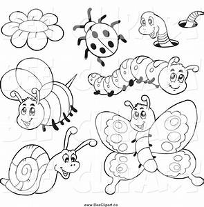 Bugs Black And White Clipart (55+)