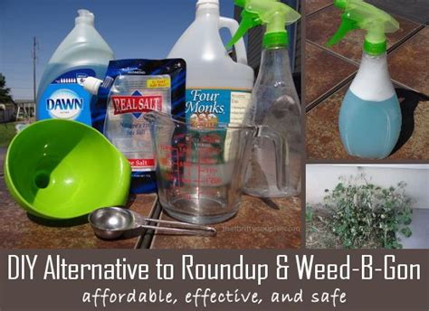 diy alternative for b or roundup
