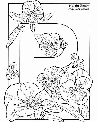 Coloring Pages Flowers Alphabet Garden Dover Pansy