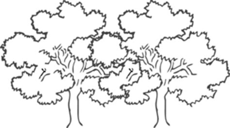 joined oak trees clip art  clkercom vector clip