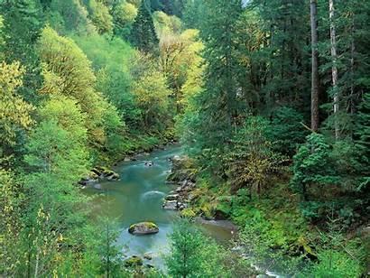 Nature Scenes Rivers Desk Fiumi