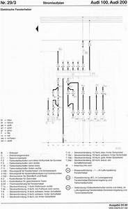 1989 Audi 100 Quattro Fuel Pump Wiring Diagram  1989  Free Engine Image For User Manual Download