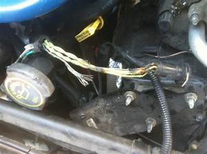 Bare Injector Harness Wires   Melted