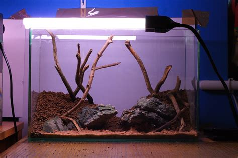 Aquascape Substrate by Aquascaping World Magazine Creating Depth And Perspectve