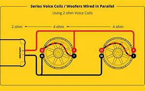 2 Ohm Dvc Wiring Diagram