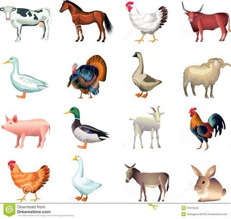 farm animals clipart printable pencil   color farm