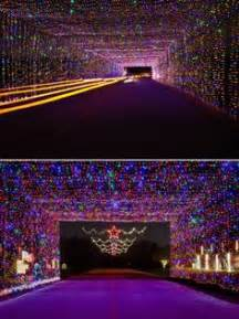 joe pool christmas lights 216 best a tropical and lights around the world images in 2018