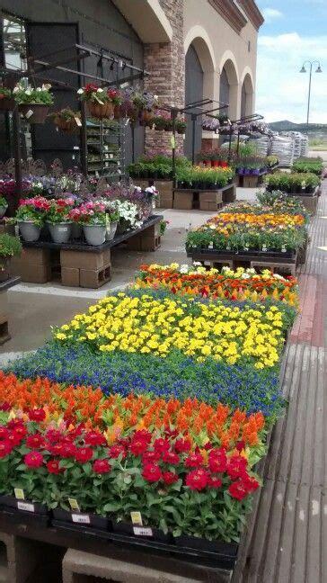 lowes garden center best 25 lowe s garden center ideas on garden