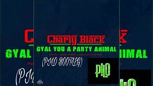 CHARLY BLACK - GYAL YOU TO PARTY ANIMAL (PILO BOOTLEG ...