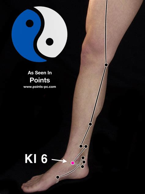 acupuncture point kidney  acupuncture technology news