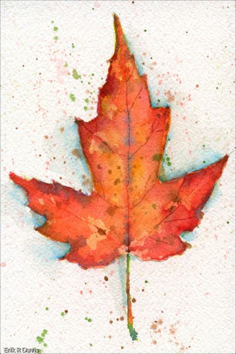 1000 images about watercolor leaves on