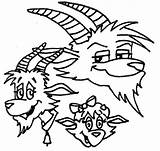 Coloring Goat Billy Brothers Three sketch template