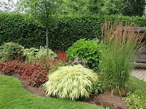 plate bande de mi ombre jardin pinterest nuances With superior amenagement petit jardin exotique 4 comment amenager un petit jardin idee deco original