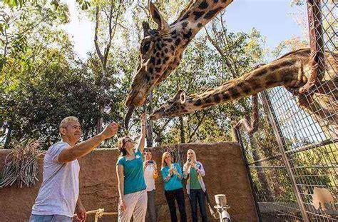 zoos zoo america diego san guide fodors usa visit americas fodor north global