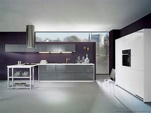 pictures of kitchens modern gray 2273