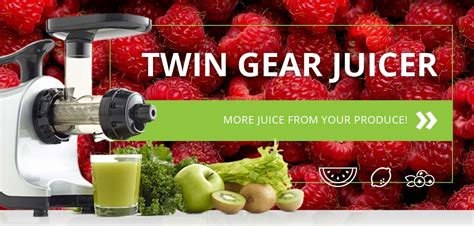 Best Masticating Juicer by The Best Masticating Juicer On The Market For The Money