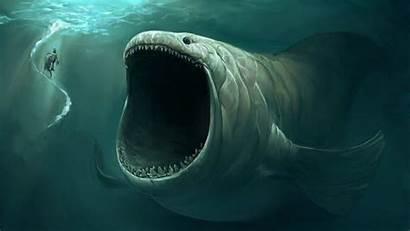 Fish Ocean Deep Pixelstalk