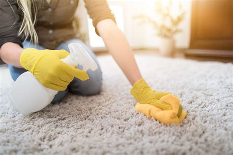7 Tips For Cleaning Mildew From Your Carpet