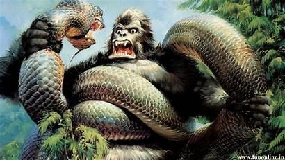 Anaconda Wallpapers Jungle Attack King Kong Snakes